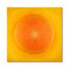 Leinwandbild Torus Sonne in Gold ab Größe 30cm x 30cm - Energiebild handgemalt