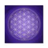 Wandbild Blume des Lebens Gold und Violett Seelentor ab Größe 30cm x 30cm - Energiebild handgemalt