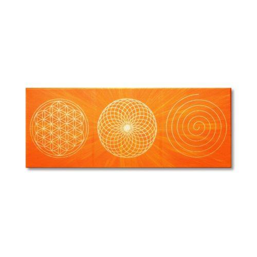 Wandbild Energiebahnen Blume des Lebens Spirale Torus