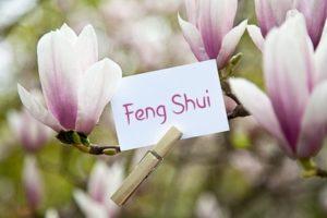 Feng-Shui Beratung
